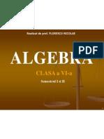 algebra clasa a vi-a