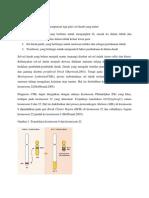 Patofisiologi CML