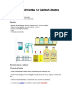 Reconocimiento de Carbohidratos.docx