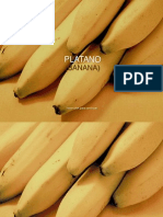 Pl_tanos__