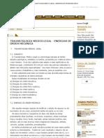Traumatologia Medico Legal - Energias de Ordem Mecanica