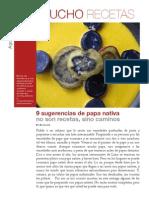 9 sugerencias de papa nativa