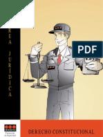 MANUAL-SECURITAS-Area-Juridica-Derecho-constitucional.pdf