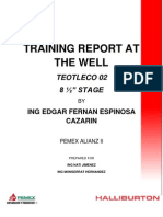 TEOTLECO 02  8.5 STAGE Training Report-.pdf