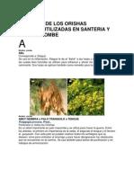 Botanica de Los Orishas.pdf