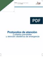 PROTOCOLO OBTETRICO.pdf