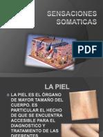 Estructuras de La Piel Anatomofisiologia