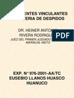 Precedentesvinculantesdr Heiner 090908221359 Phpapp02