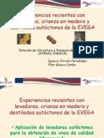Presentacion_EVEGA LEVADURAS
