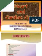 DNA2life_Heart and Cardiac Cycle