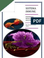Ensayo Sistema Inmune
