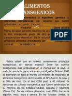 ALIMENTOS TRANSGENICOS.pptx
