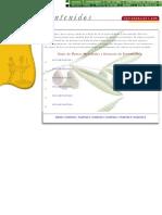 Botanica - Libro Digital - Guia de Plantas Medicinales de Extremadura