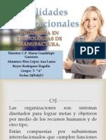 Habilidades Organizacionales 2.ppt