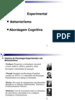 Aula Behaviorismo Cognitivo