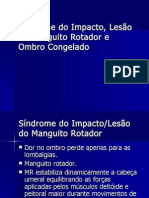 Sindrome Do Impacto e Lesao Do Manguito Rotador