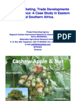Cashew Marketing Trade Developments and Experience a Case Study in ...