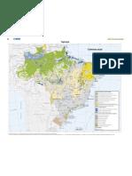 Atlas Nacional Do Brasil 2010 Pagina 88 Vegetacao Cobertura Atual (1)