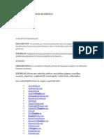 Cómo Buscar Empleo.doc