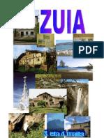 ZUIA  AZALA.doc