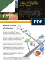 pipeline_insert_spanish.pdf