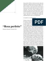 42950528 Rosa Perfetto Domenico Quaranta About Alterazioni Video