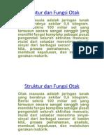 Struktur Dan Fungsi Otakx