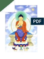 Buddha Nature.pdf
