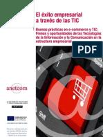 Guia Exito Empresarial TIC