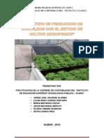 PROYECTO DE INVERSION PARA EL 2013 - Original.docx