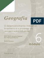 Geografia O Desenvolvimento Industrial Brasileiro e o Processo de Concentração Industrial-www.LivrosGratis.net