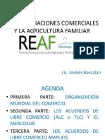 Presentacion Andres Bancalari REAF