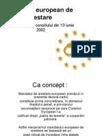 Drept Penal European