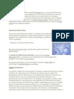 60304673-Tincion-diferencial.pdf