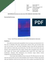PCR Nadiya