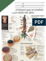 Infografía de la Quinoa