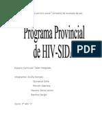 Programa Provincial de HIV 2 taller.doc