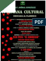Cartel Semana Cultural2013