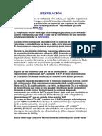 RESPIRACIÓN CELULAR...BIOLOGIA 2.0 MACHIN Xdd