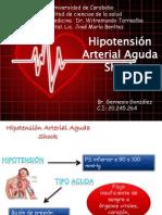 Seminario de Hipotension