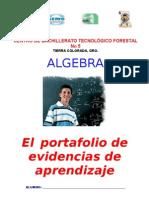 Portafolio de Evidencia ALGEBRA 2012