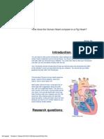 pig heart dissection lab 2012-2013 fist  unicorn edited 2