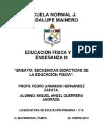 Ensayo - Las secuencias didacticas de la educacion fisica.docx
