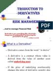 Derivative & Risk Management