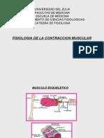 2. Fisiologia de La Contraccion Muscular