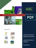 ABC Del Cluster de Conocimiento en Biotecnologia
