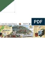 A Regiao Amazonica