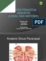 Faktor Pencetus Sinusitis