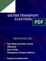 40541303 Transport Elektron