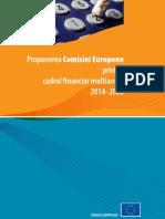 Cadru Financiar CE